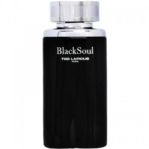 Ted Lapidus Black Soul Eau De Toilette Hommes